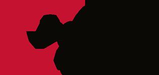 Enerspect Medical Solutions Logo