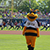 Buzz the bee giving signatures