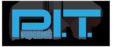Proponent IT Logo